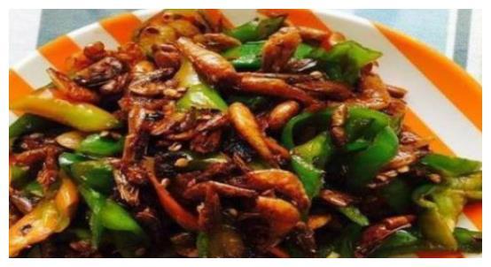 大厨教您几道美味家常菜,荤素搭配营养美味,爽口下饭,百吃不厌