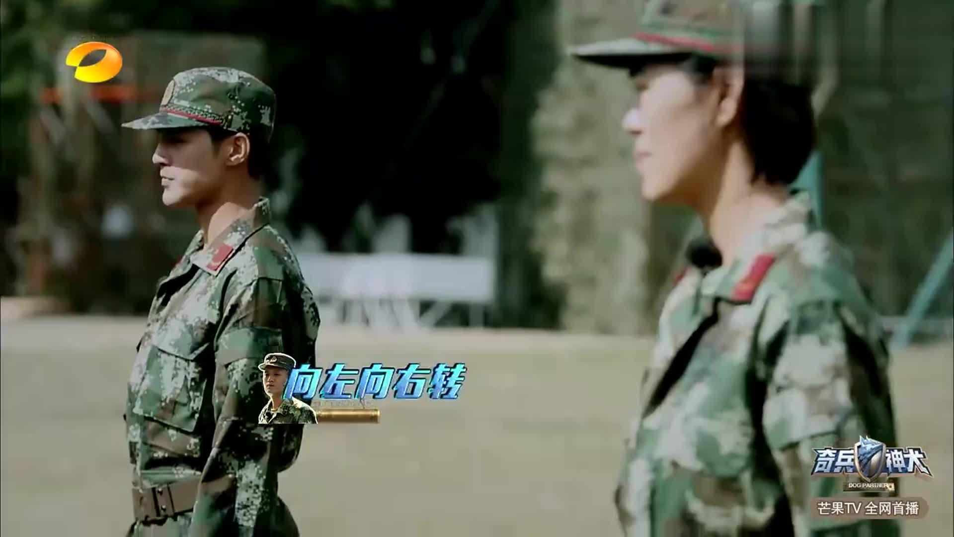 奇兵神犬-姜潮现场表白教官,惊呆张馨予,真是神仙操作啊!