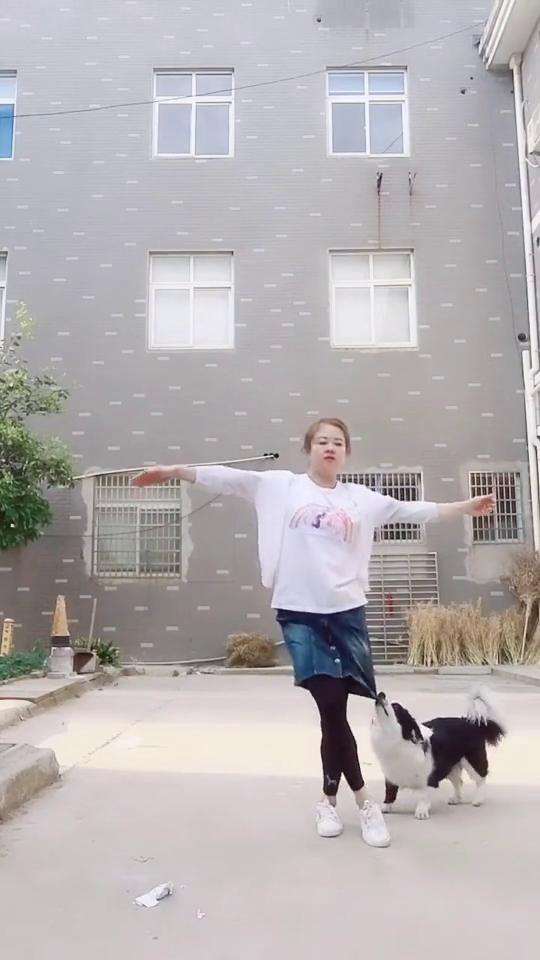 姑娘这舞蹈跳的很不错啊,不过狗狗你是过来捣乱的吗?
