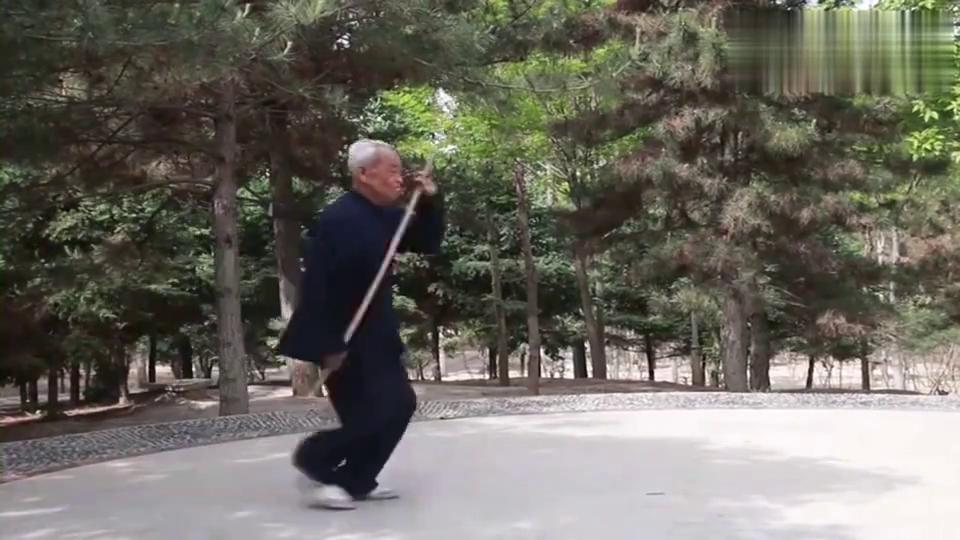 老宗师公园演练传统武术,这棍法和枪法耍得气势如虹