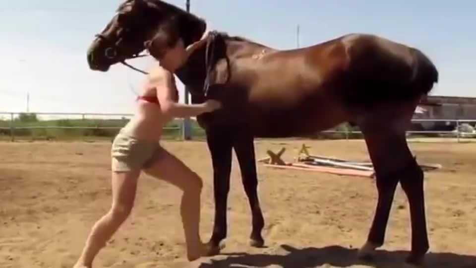 一女子想骑马,结果试了半天上不去,下一秒意外发生