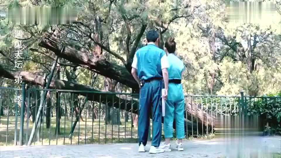 戚薇变身七哥,模仿古树高难度造型惊呆冯绍峰,真是个豪爽女子