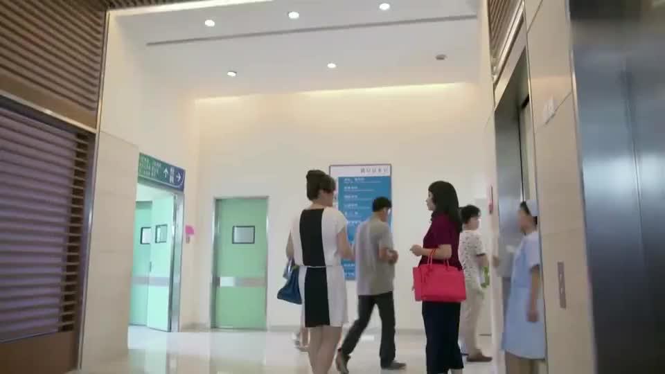 功夫之爱的速递:医院院长的两位夫人,在医院吵架,护士前来劝架