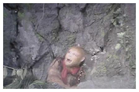 出现六耳猕猴时,地藏王菩萨的坐骑明明分辨出了真伪,为何不说?