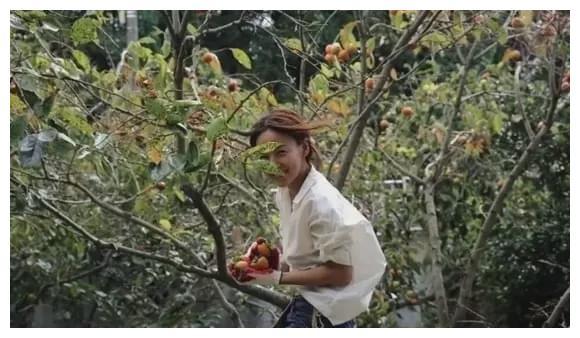 从荧幕上的性感女王到山野中的最美村妇,李孝利都经历了什么