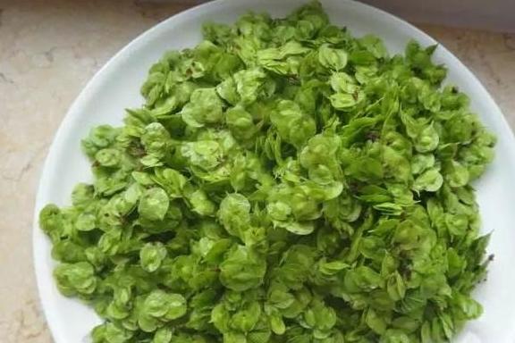 """今年春天,以下四种野菜堪称土豪标配,吃过才称得上""""真土豪"""""""