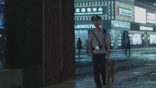 警犬来啦:俩情敌会面被男警看到,大喊完了