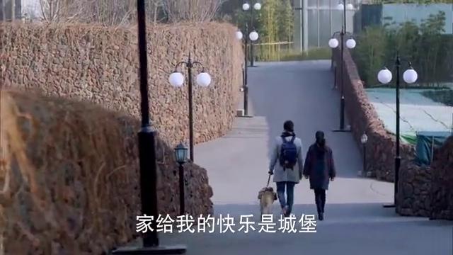 神犬小七:艾亮去参加考试,浮夸的造型被人说