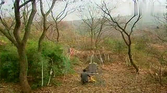 哑巴新娘:静云祭拜苏凤,却发现已经有人在了,不忍去打扰
