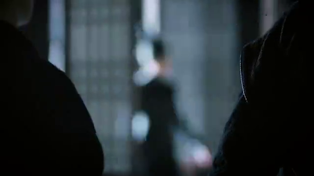 卿尘随那人来到了碧血阁据点,一黑衣女子走了进来,竟然是武娉婷