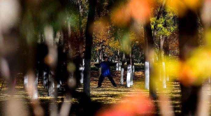 元大都马拉松冠军俱乐部在北京奥林匹克森林公园进行比赛