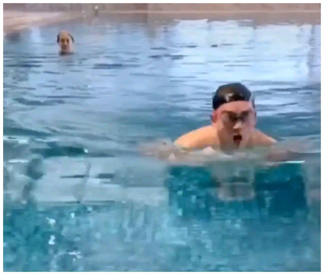 郑恺陪孕妻游泳,苗苗在其身后戴泳帽脸超小