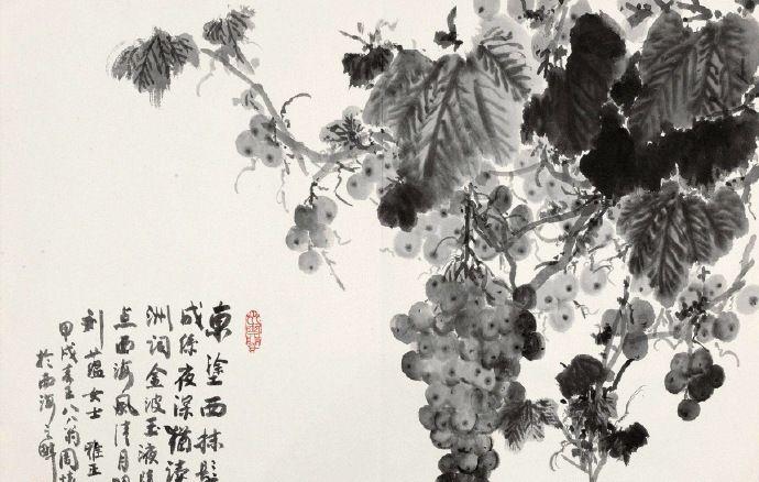 野田生葡萄,缠绕一枝高。国画葡萄作品