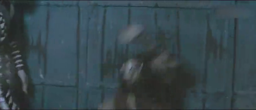 深海巨妖2:众人治服海盗,鲛鲨处置海盗头目!可怜了长尾!