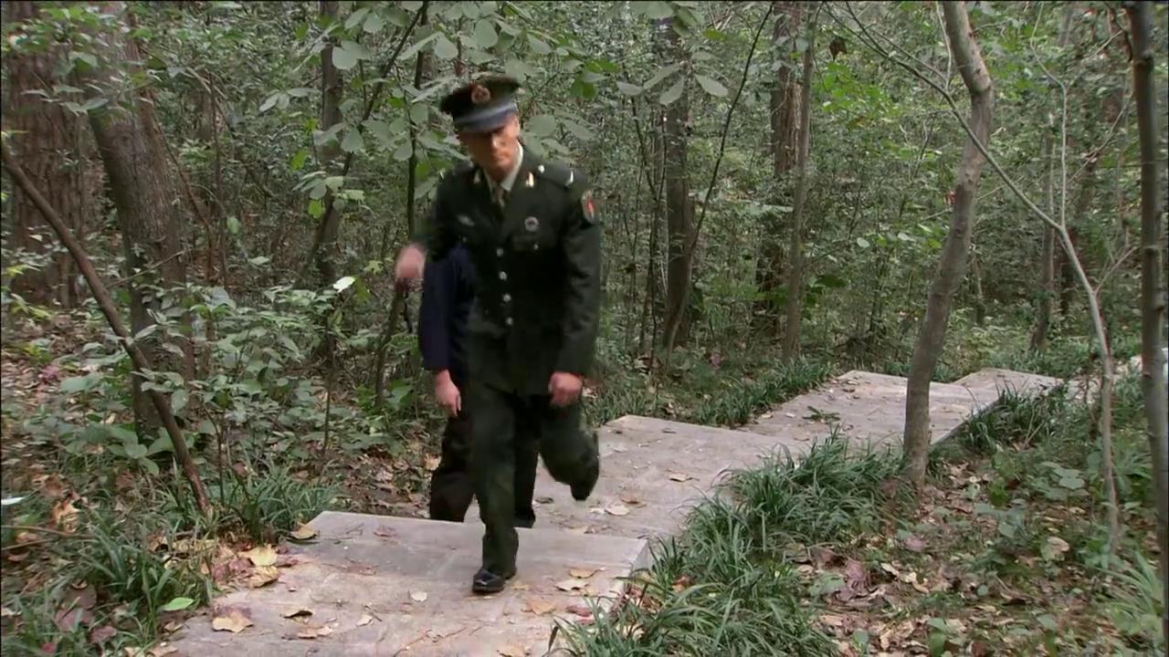 首长约特种兵在森林里见面,说出一个惊天秘密,他竟是国际杀手