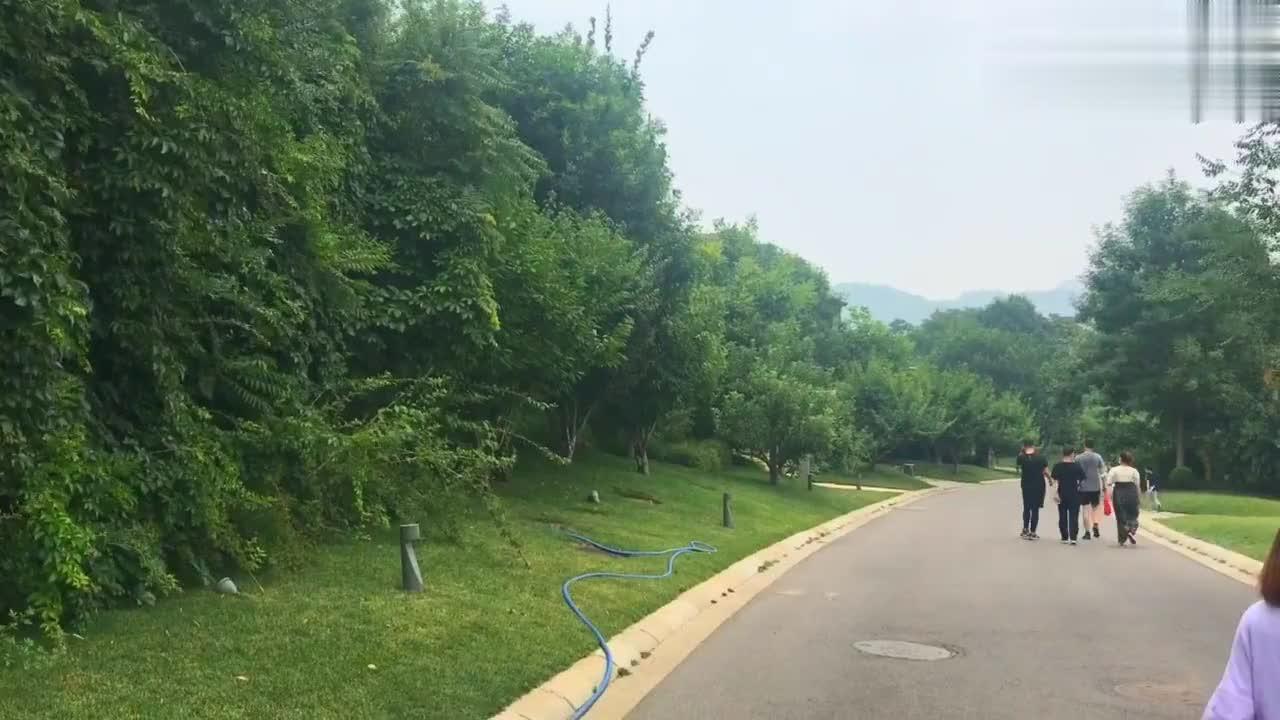 汪峰求婚章子怡的金海湖度假村有多美