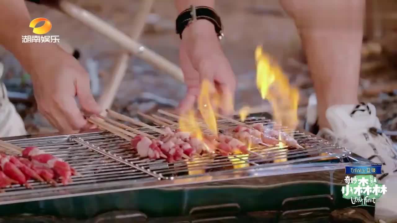吴奇隆野外摆烧烤摊,谁料遭宝宝们催命轰炸,结果却都烤糊了!