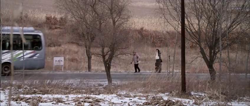 雪妮和王玉芬下了车,两人走在玉米地里,网友:这要做啥