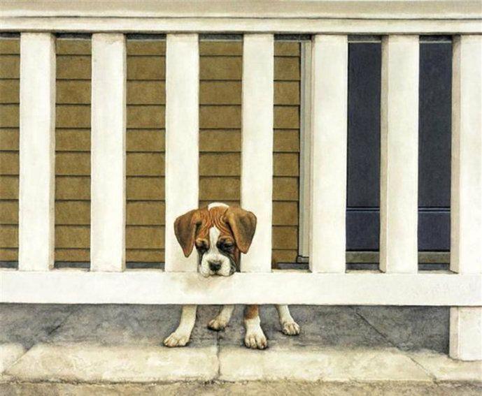 是绘画,还是摄影,美国画家Sueellen Ross画宠物狗作品一组
