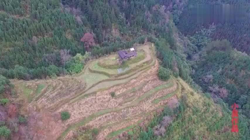 无人机发现深山里的隐居人家,居住山包上,地理位置真不简单啊!