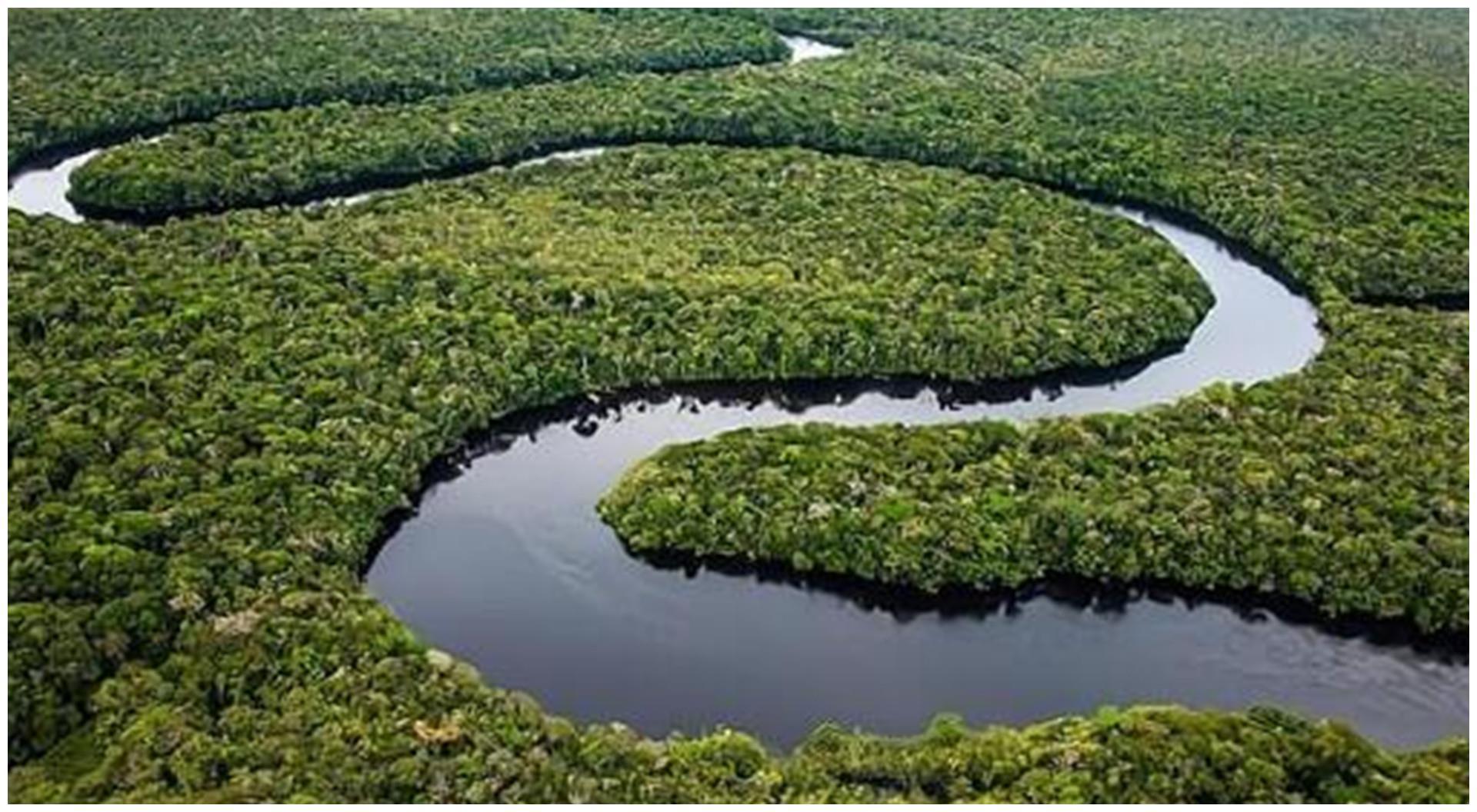 亚马逊河究竟有何可怕之处?为何没有人敢在亚马逊河中游泳?