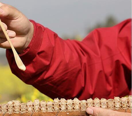 绝经女性吃蜂王浆好吗?绝经后的女人可以吃蜂王浆吗?