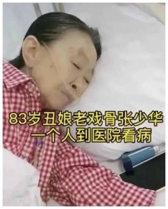 打同事、夺齐白石真迹?张少华人设崩塌,如今躺在医院无人看望