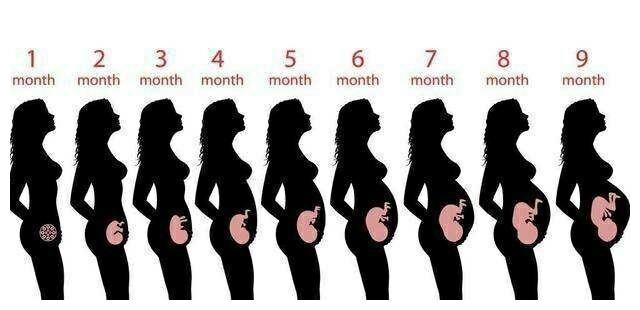 32周的胎儿有多重了?宝妈教你两个公式计算,附孕8个月注意事项