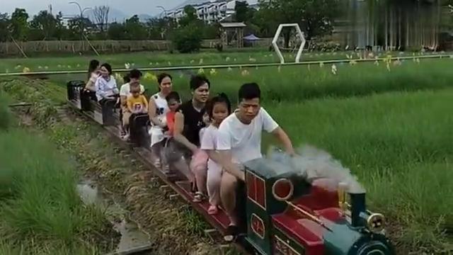 这才叫幸福!男子开着自己组装的小火车,载着妻儿在自家田边游玩
