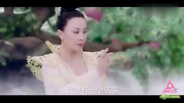 杨紫古装混剪《年轮》,就算是天机,也算不了命运!