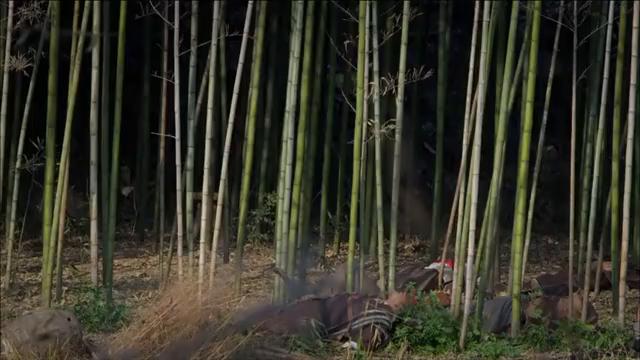 鬼子大炮火力的压制,两名八路高手从天而降,一刀摧毁日军炮筒!