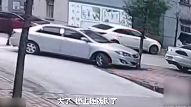 交通事故合集:女司机倒车难入库,男司机酒后撞断树!