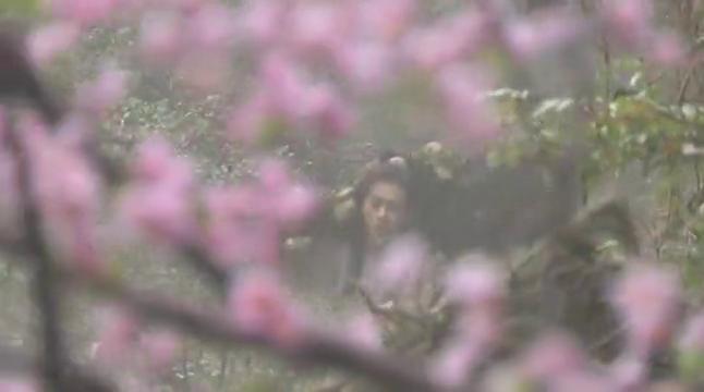 三变在桃花林逃避多日,珍贵的太阿古剑,竟拿来砍柴烧火?