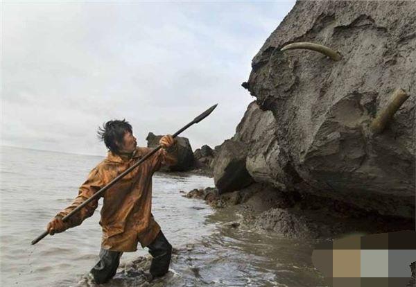 男子在海边岩石上不停的挖,接下来挖出一个大宝贝!