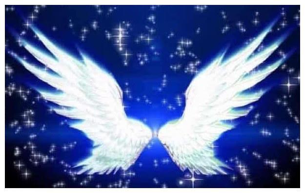 塔罗占卜:你觉得哪双翅膀最梦幻,测你会不会喜欢上渣男!