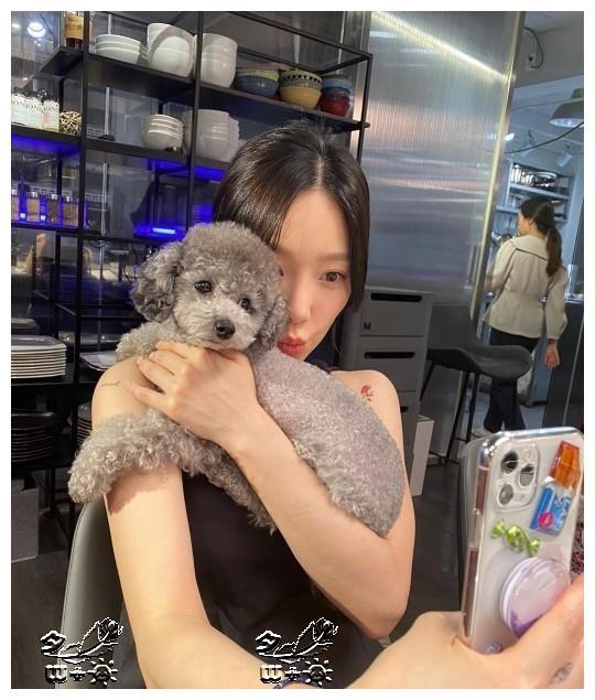 少女时代泰妍,和ZERO幸福的日常,秀英yuri夸夸夸