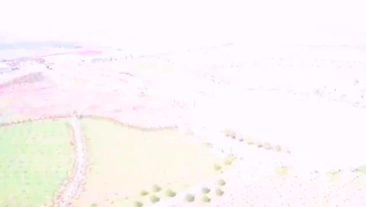 航拍河南鄢陵五彩大地尽芳菲  像天然的田园调色板