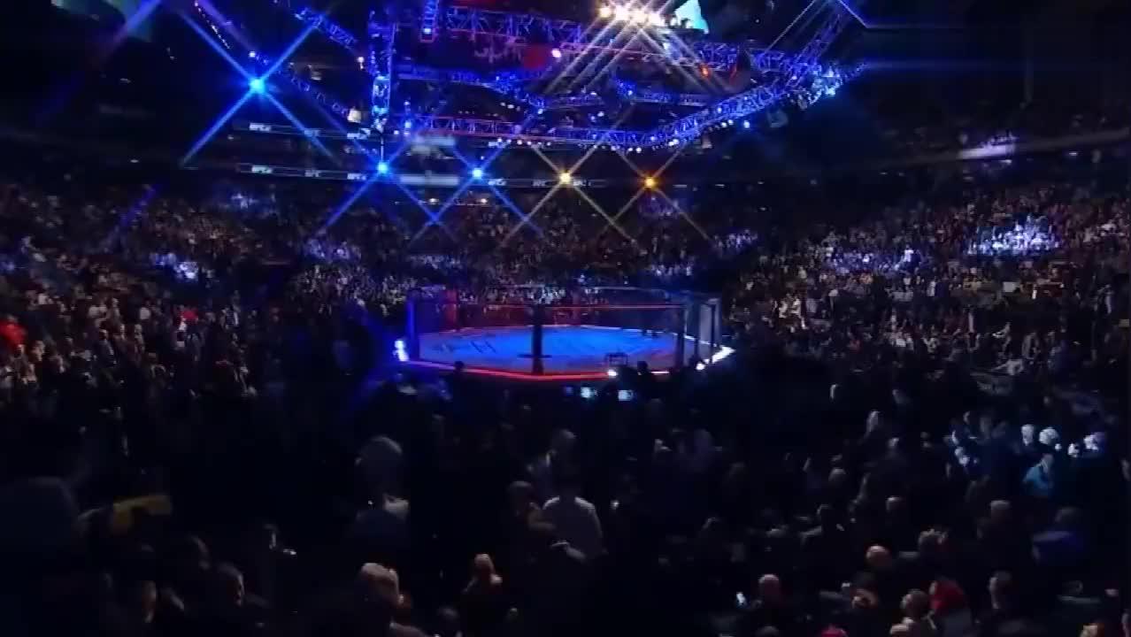 UFC:听说莱斯纳在WWE输了?在八角笼野兽可撑不过一回合