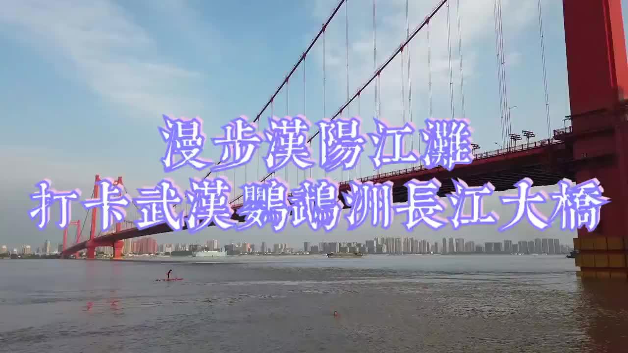 汉阳江滩鹦鹉洲大桥下面有一棵500年乌木,或许是古鹦鹉洲的佐证