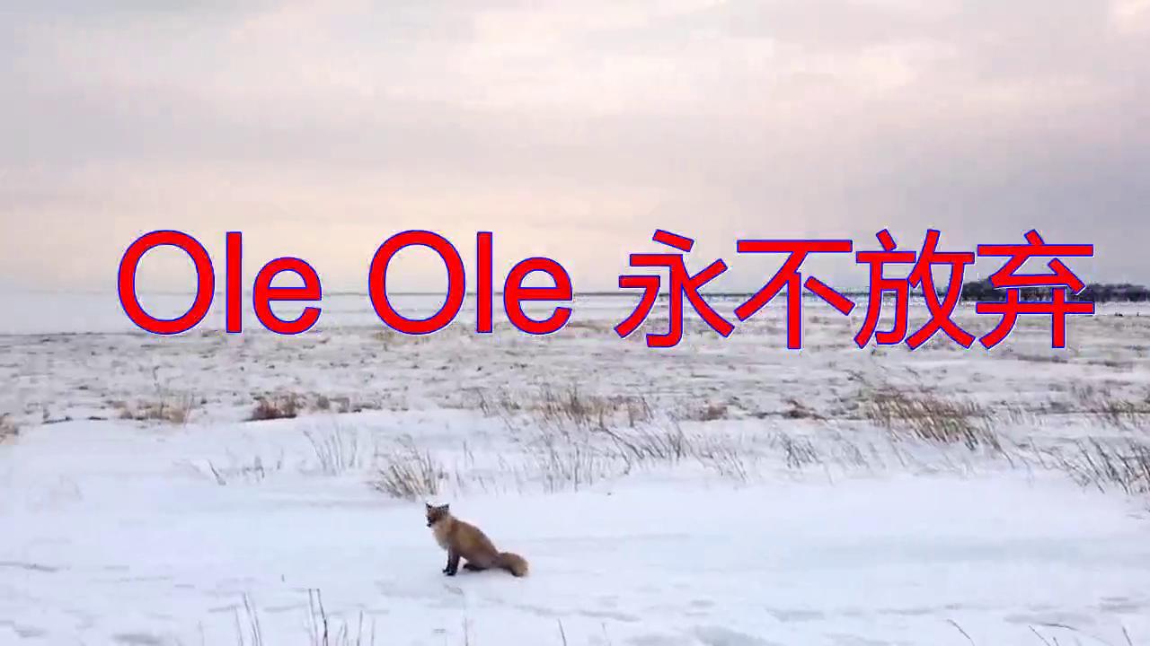 温拿、谭咏麟的一首《Ole Ole 永不放弃》,满满的回忆