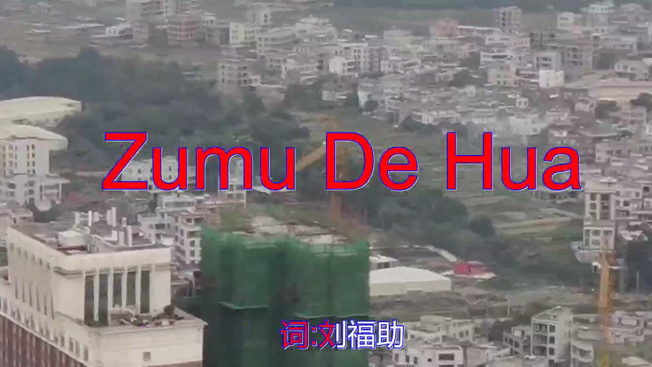 邓丽君的一首《Zumu De Hua》,嗓音独特,堪比原唱