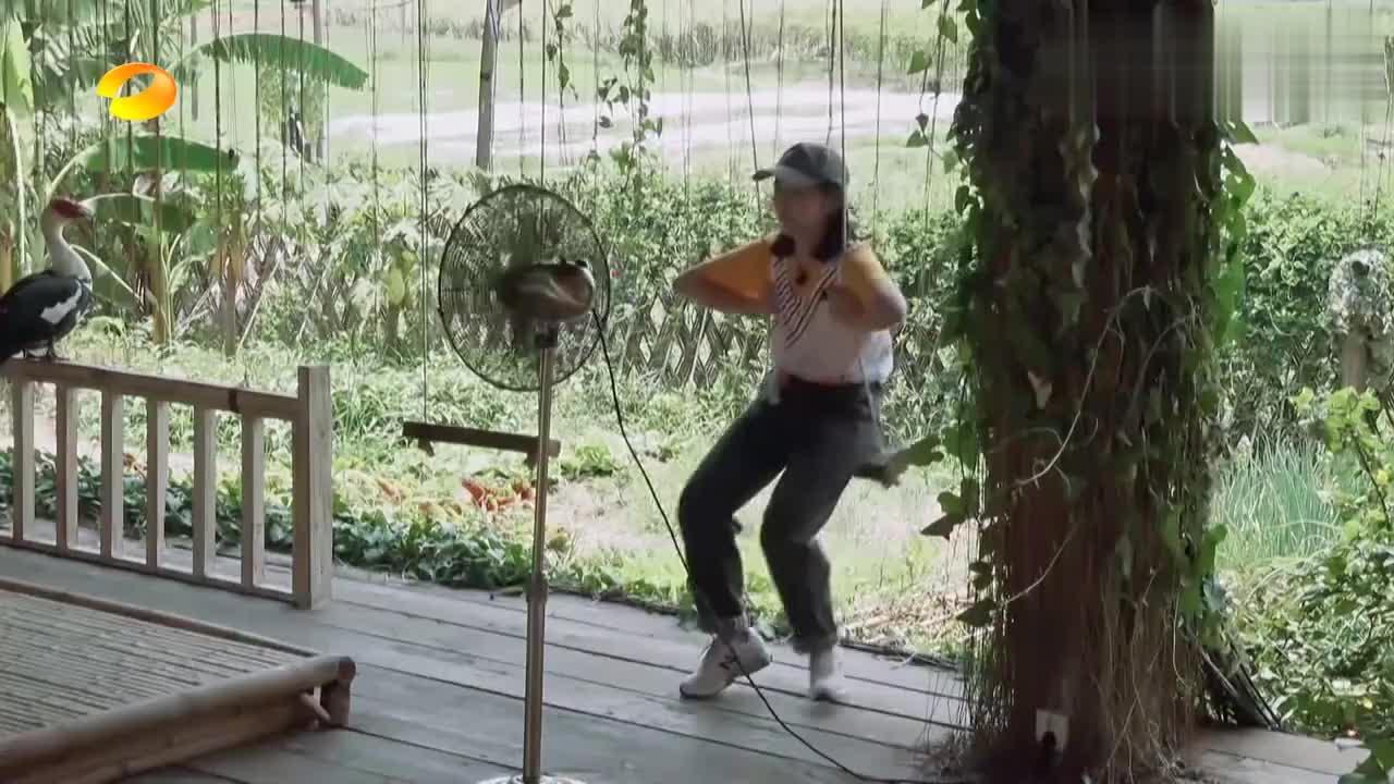 看到张子枫的穿着,黄磊自曝每天都在热死的边缘,何炅爆笑!