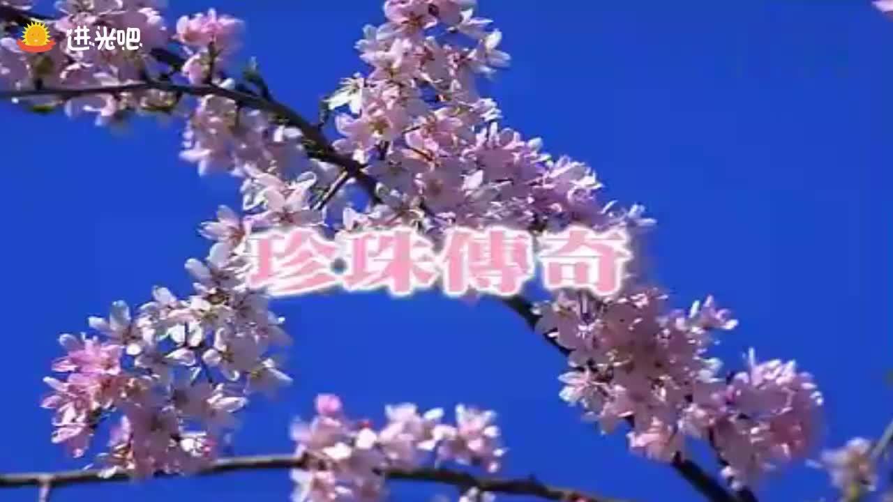 电视剧《珍珠传奇》片头曲,望断西京留传奇,声音太美了!