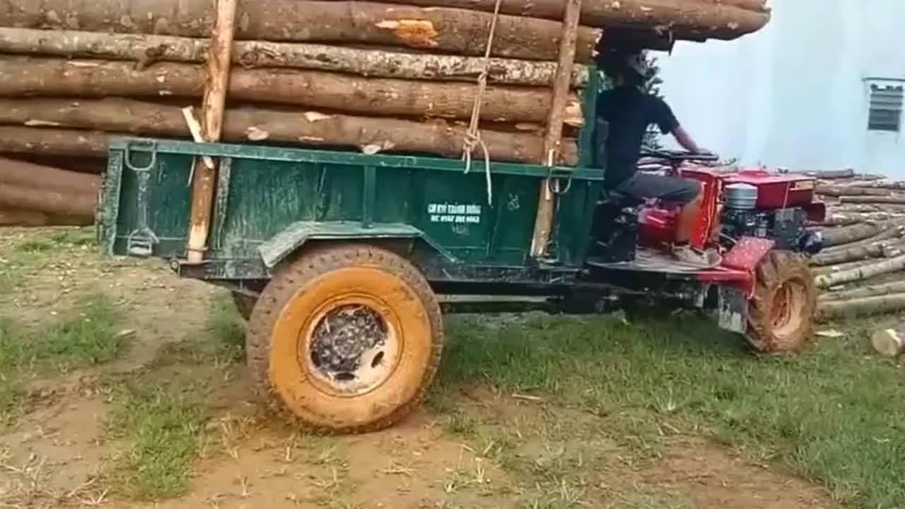 不是老司机绝对不敢这么运输木材