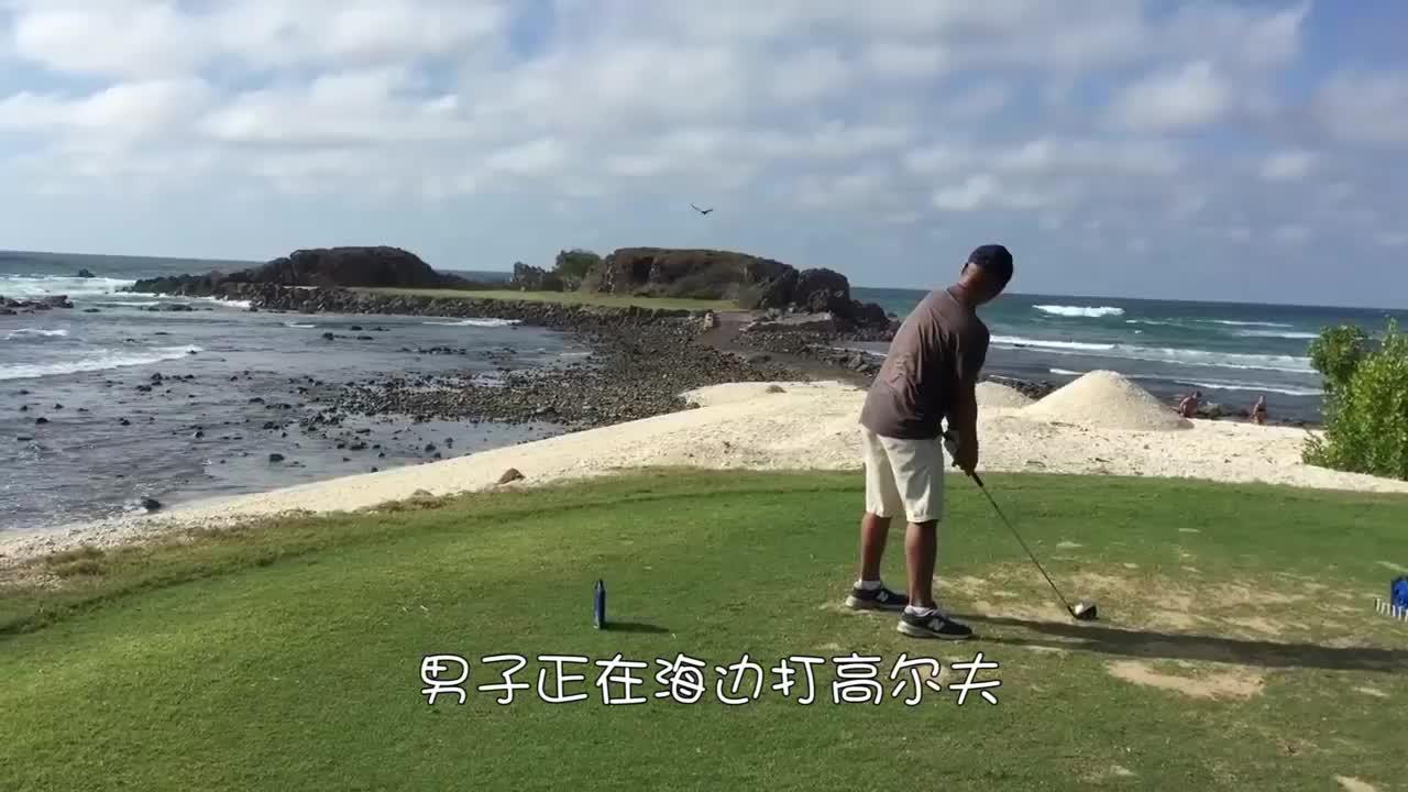 男子海边打高尔夫球,直接击中路过鸟儿,这命中率真高