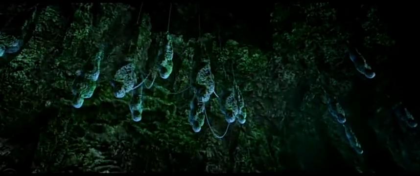 探险队发现石洞上吊有东西,不料食人鱼吃了发生变异,崩塌