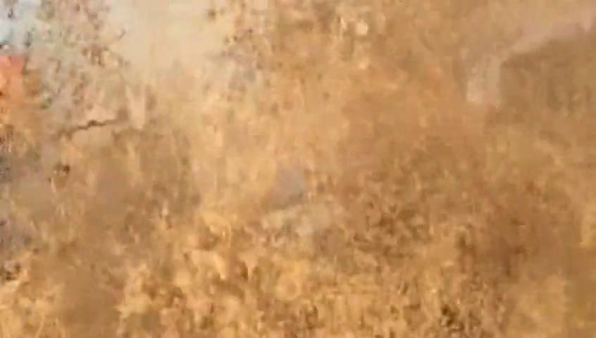 福特猛禽挑战水坑,这车主真是罕见的生猛,把鱼都给撞飞了!