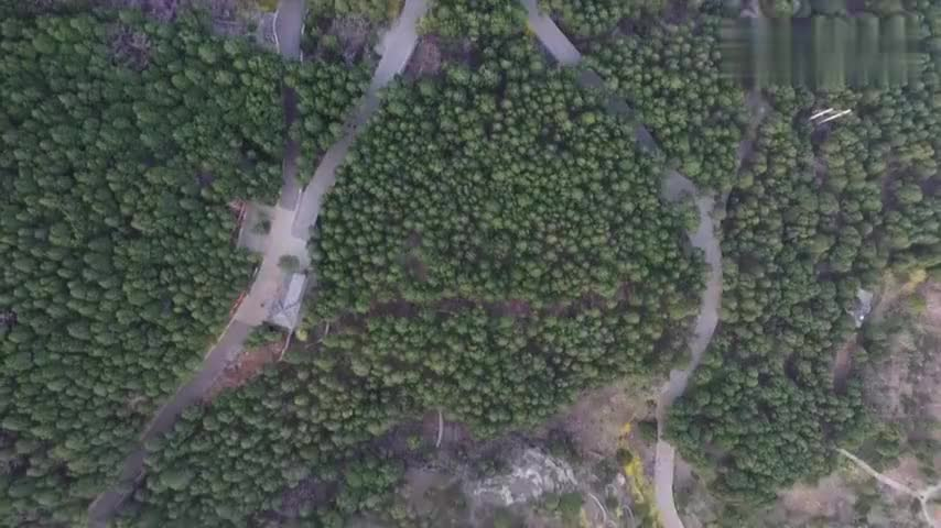 航拍济南佛慧山绿色森林中的步道令人心旷神怡