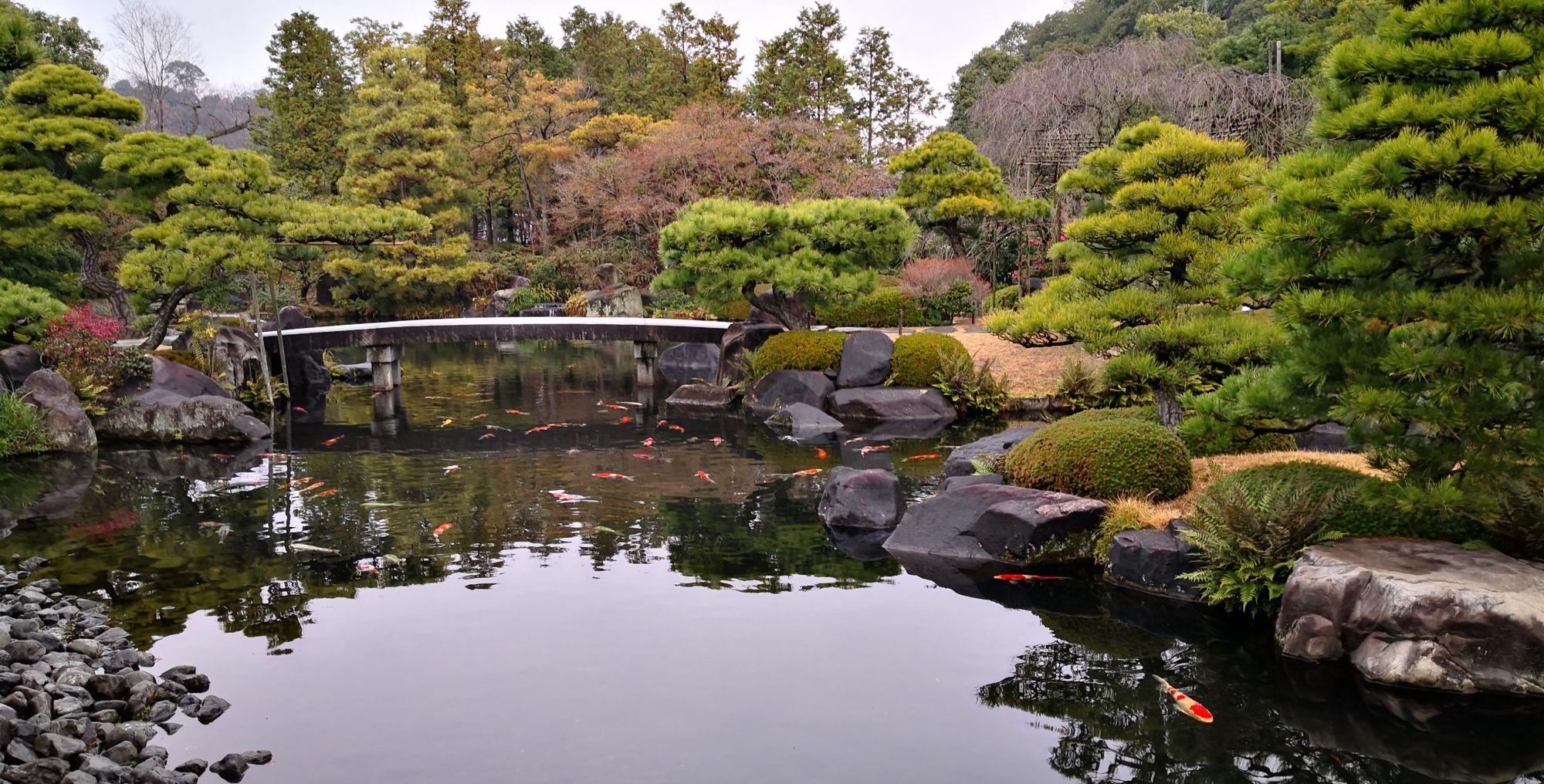 冬天访日,既无樱花也无红叶,看日式园林有何特征