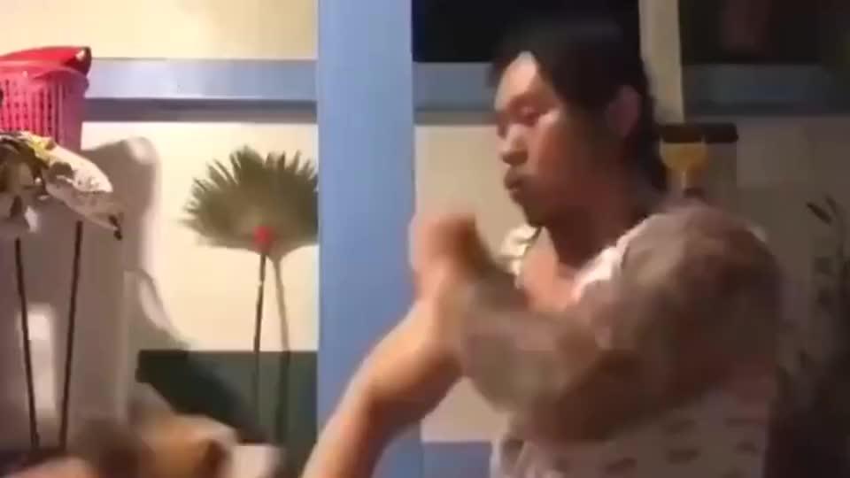 说出来你可能不信,我的咏春拳是我家狗教的!